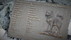 """Plakett med navn som """"Orange Bastard"""" og Girl, til minne om sledehundene som har tjenestegjort i Antarktis med relieff oav en sledehund."""