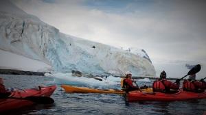 Bilde av flere kajakker i rødt og gult med hvite isfjell rundt, på isen ligger en leopardsel.