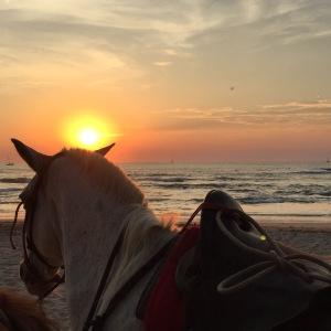 Om kvelden kan du ri på stranda i solnedgangen.